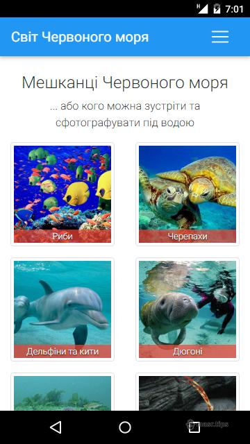 підводний світ червоного моря