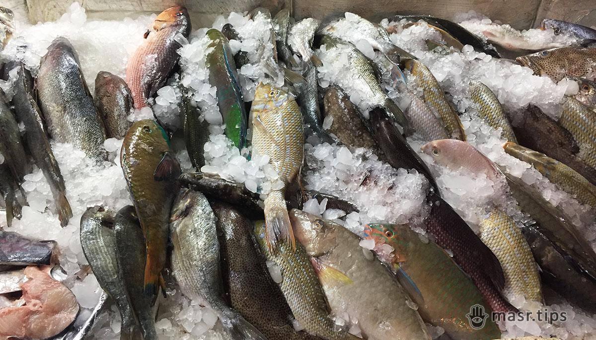 Знайшли і розповідаємо про рибний ресторан в Шармі – Fares Seafood